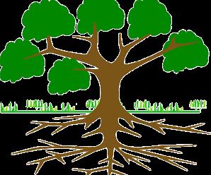 Ejercicios de Diagrama de Arbol